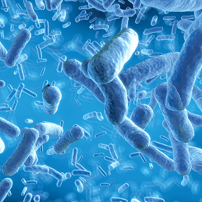 Square_400px_Bacteria_Blue.png